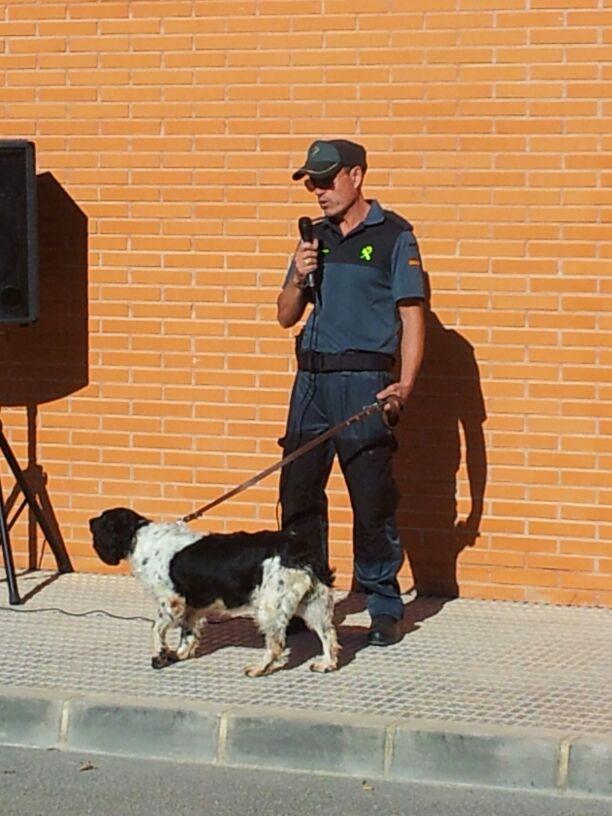 Exhibicion canina Benejúzar 7NOV2013