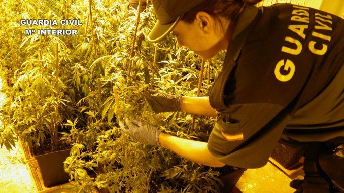 marihuana formentera