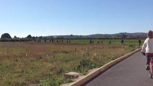 Almoradí celebra una nueva ruta verde en bici