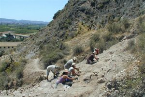 Summer archaeological excavations at the Laderas del Castillo