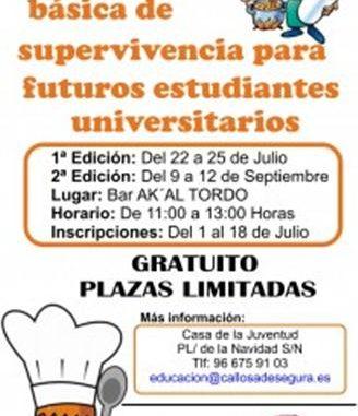 cartel-cocina-callosa2013-205x300