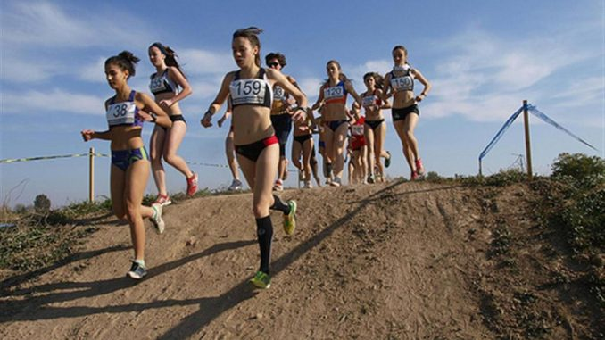 Cross Almoradi 10ene2014
