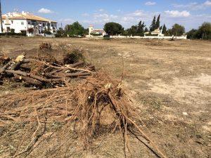 Tras 12 años el Ayuntamiento limpia una parcela de Lago Jardín