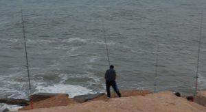 El PSOE denuncia que Torrevieja no tramita las licencias de pesca deportiva