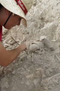 El MARQ localiza tres sepulturas de la cultura argárica en las excavaciones de Callosa del Segura