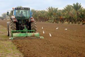 """Ferrer: """"La nueva PAC se orienta a impulsar la mentalidad empresarial del agricultor"""""""