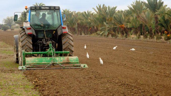 campo y tractor 26jul14