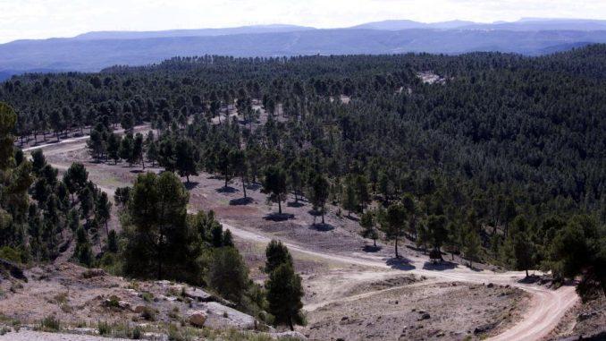 foto recurso plan desarrollo rural