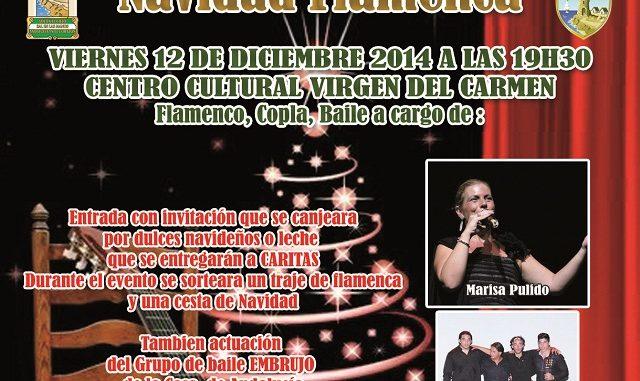 041.- Cartel NAVIDAD FLAMENCA 2014