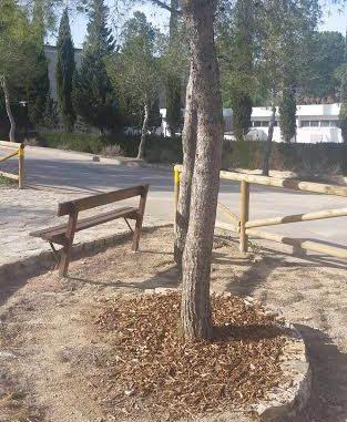 foto restauración forestal Benejúzar