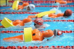 La piscina municipal de Torrevieja acoge las pruebas clasificatorias para el Campeonato de España de Salvamento y Socorrismo