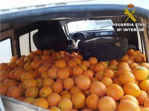 Detienen a cuatro personas por el hurto de más de una tonelada de naranjas en San Miguel de Salinas