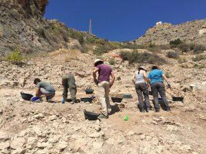 Hallan tumbas infantiles y abalorios de marfil en las excavaciones de la Sierra de Callosa