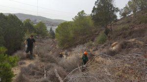 Comienzan los trabajos de mantenimiento de la ladera del monte del Castillo