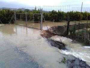 IU Almoradí pide que se informe de las ayudas aprobadas para paliar los daños del temporal