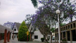El Parque Científico de la UMH organiza en Orihuela una jornada sobre la industria 4.0 en el sector agroalimentario