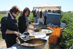 Las empresas de alcachofa de la Vega Baja muestran su potencial a los científicos del Symposium Internacional