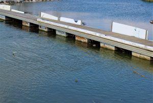 La CHS instalará rejillas en los entronques de las azarbes para reducir los plásticos en el río Segura