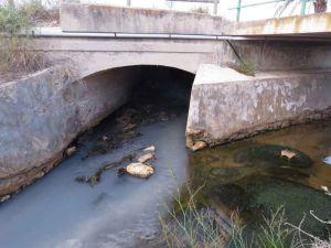 Vertidos contaminantes del Polígono Industrial de San Isidro que afectan al Parque Natural de El Hondo