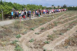 Visita a la huerta tradicional y al Museo Etnográfico de Rojales el próximo domingo