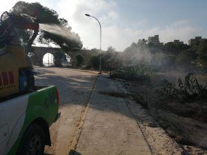 Medio Ambiente prevendrá las plagas de mosquitos y quironómidos en Orihuela con un Plan de Actuación anual