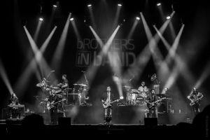 Brothers in Band repasará los mejores temas de Dire Straits en el Auditorio de Torrevieja