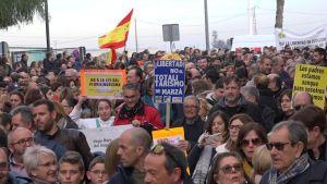 """Histórica manifestación en Orihuela """"contra la ley que pretende imponer el valenciano en las aulas"""""""