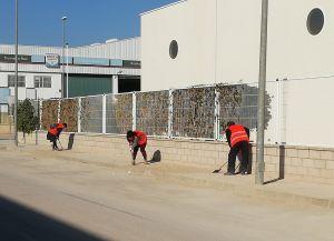El Ayuntamiento de Almoradí contrata a 75 desempleados
