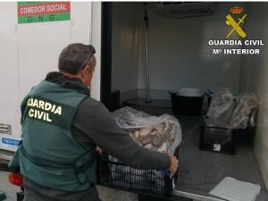 Incautan en Torrevieja 800 kilos de pescado irregular