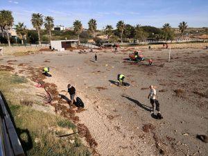Más de medio centenar de voluntarios participan en la limpieza de plásticos en las playas de Orihuela
