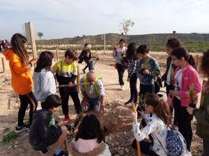 Más de 170 escolares de Bigastro reforestan el Mirador de la Ruta Alquibla afectado por la DANA